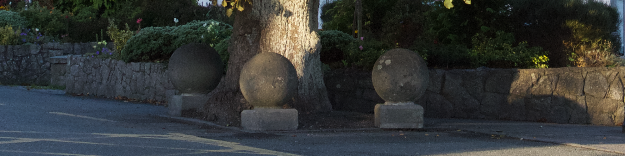 Four StoneTree Marker In Blessington Village